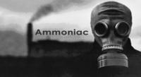 LA TIMAC CONTINUE DE REJETER DE L'AMMONIAC,  LES AUTORITÉS PERSISTENT À SE TAIRE (Communiqué)